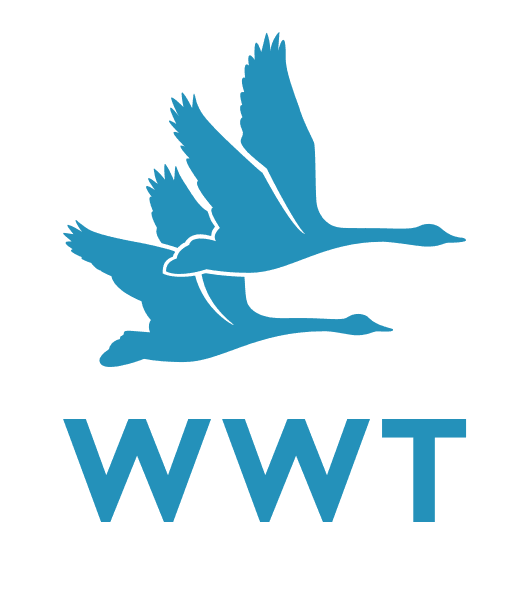 WWT_col