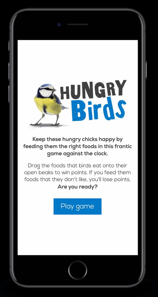 hungry-birds